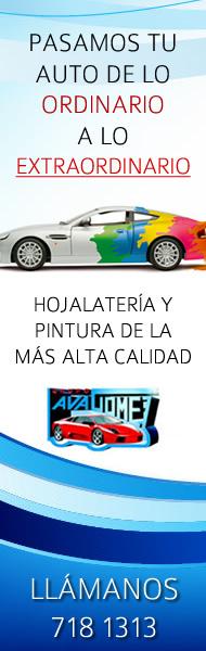 Lavagomez Leon Guanajuato